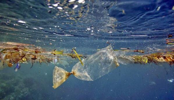 sampah-plastik-di-laut.-foto-ilustrasiist